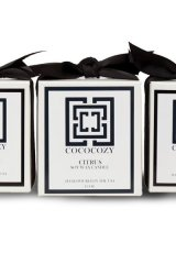 Cococozy's collection of fragrant candles create a mood money can't buy. www.cococozy.com