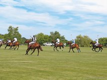 polo for heart held at the toronto polo club in richmond hill