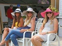 spectators enjoy the view at the toronto polo club