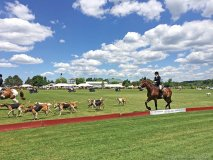 the annual polo for heart celebrates its 35th anniversary this year