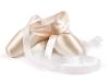 heather-ogden-guillaume-cote-ballet-shoes