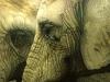 """Mark Strutt's """"Big Thinkers"""""""