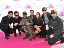 Sam Roberts Band with Robert Scheinberg, Danielle Eden and Napa the mastiff