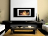 the bio flame fireplace