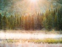 Misty Algonquin Morning,  Algonquin Provincial Park, Ont.