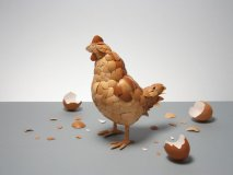 A chicken made of eggshells titled What Came First? Photography: Kyle Bean