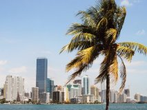 EPIC's positioning at the tip of a peninsula makes it one of the best locations Miami has to offer.