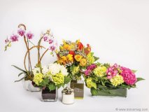 The Pusateri's Luxury Home and Floral Shop's stunning arrangements are perfect for gifts, energizing the home and office, and transforming special occasions into memorable ones