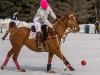 Snow Polo Tremblant International