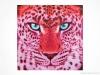 Pink Leopard by Sabrina Rupprecht