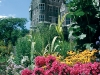 Besides the tall, standing castle at Casa Loma, its charming plants will make you feel like you've stepped into the pages of a fairytale.