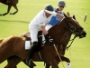 Polo elite strive to win Cartier's Maillet d'Or trophy.