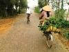 vietnam banana picking bike ride nathanlane