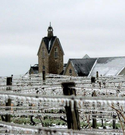 Fred Degasperis Jim Degasperis Vineland Estates Winery