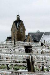 Vineland Estates Winery produces award winning Icewines, Reserve and Premium wines.