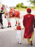 Sonny and little Rylee walk towards their transportation – a majestical white Percheron,  accessorized with traditional attire.