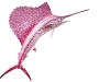 Give your home that extra splash with this delicate coral pink Swarovski crystal sailfish.